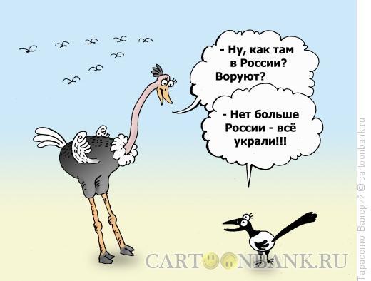Карикатура: Неперелетная птица, Тарасенко Валерий