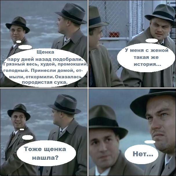 Мем: Тоже щенка нашла?, Вовочка059