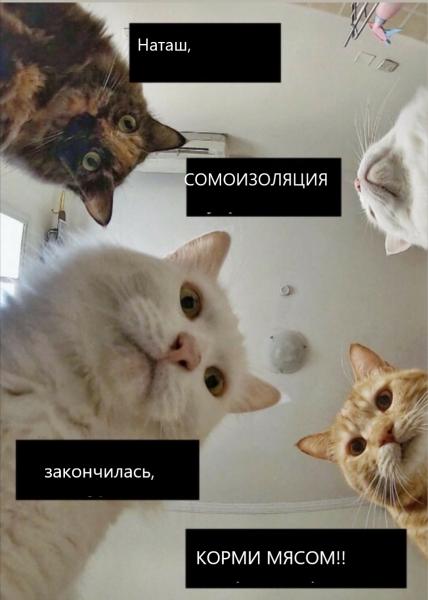 Мем: СОМОИЗОЛЯЦИЯ, Лось и его копыта