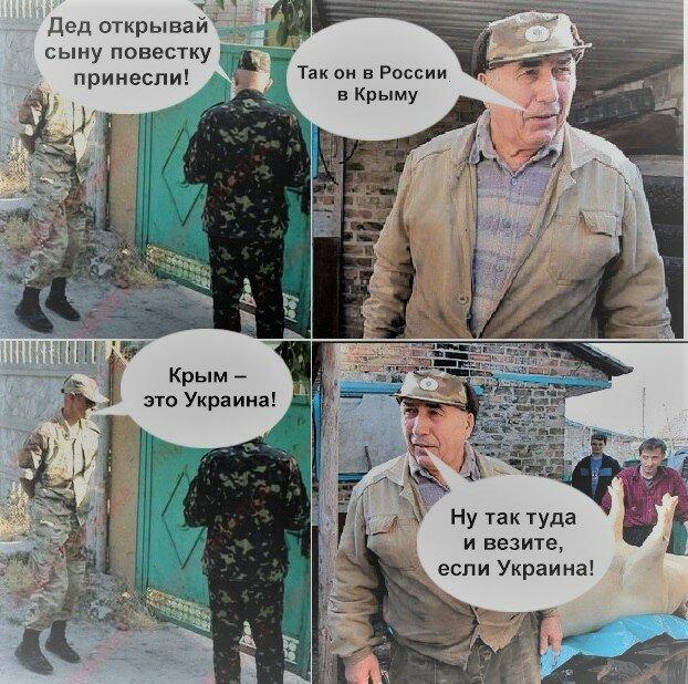 Мем: Чей Крым?, Максим Камерер