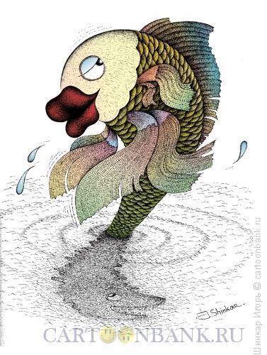 Карикатура: Рыбка моя., Шинкар Игорь