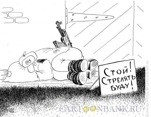 Карикатура: На посту, Шинкар Игорь