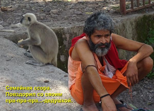 Мем: Респект Дарвину, Афоня Радостный