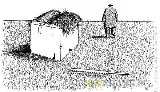 Карикатура: куб с волосами, Гурский Аркадий