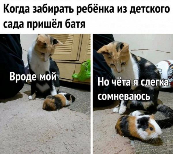 Мем, Гекс