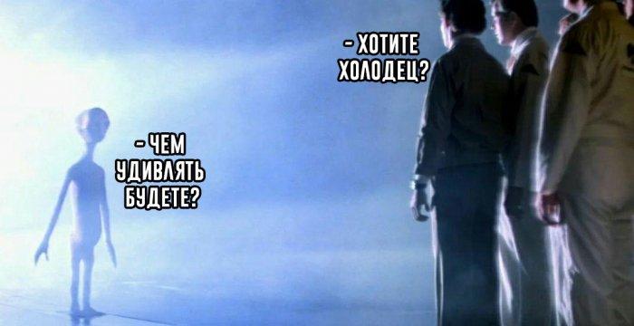 Мем, polyanina