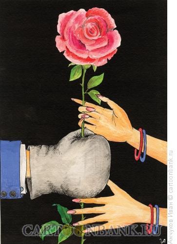 Карикатура: Шипы розы, Анчуков Иван
