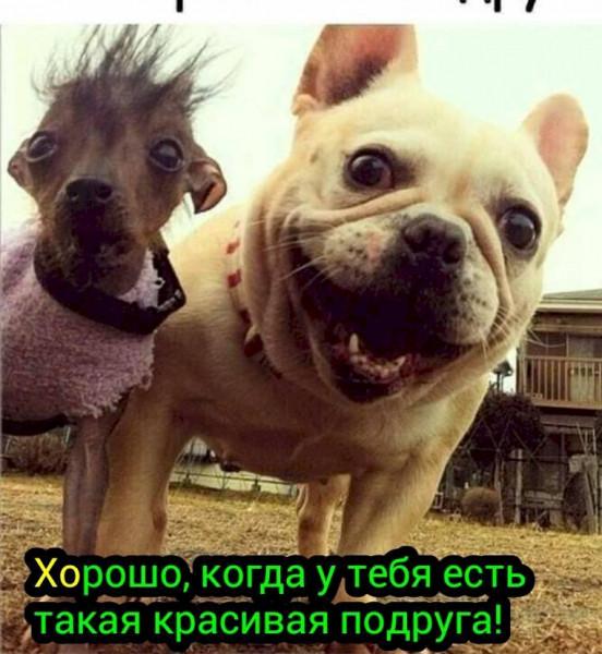 Мем, Al_Kh