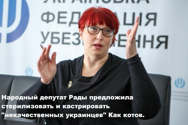 Мем: Социальная политика по-украински, Максим Камерер
