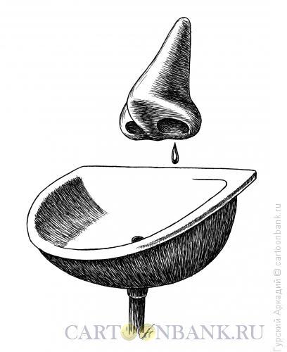 Карикатура: нос и раковина, Гурский Аркадий