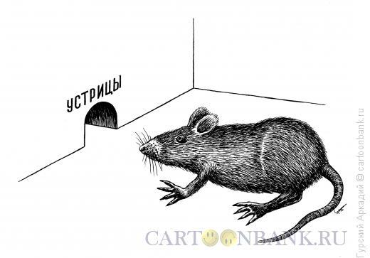 Карикатура: крыса у норки, Гурский Аркадий