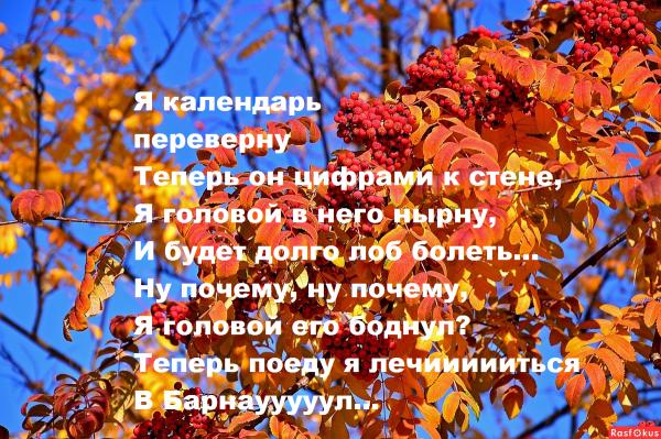 Мем: Я календарь переверну..., Вовочка059