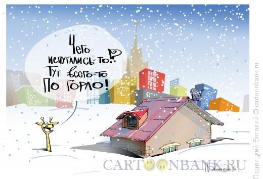 Карикатура, Подвицкий Виталий