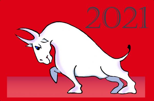 Карикатура: С новым Годом, Kapry