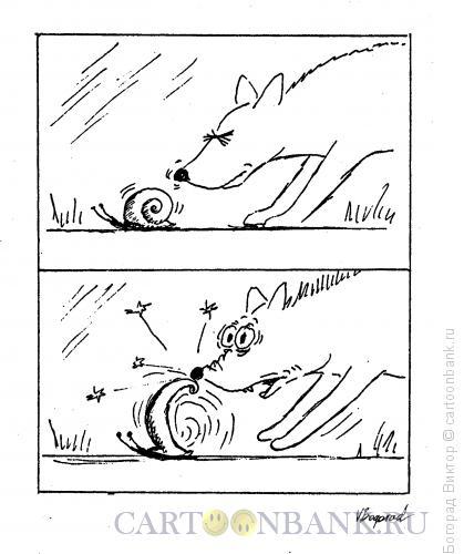 Карикатура: Собака и улитка, Богорад Виктор