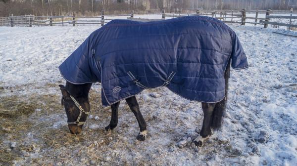 Мем: Кто? Конь в пальто!, Виктор Багаев