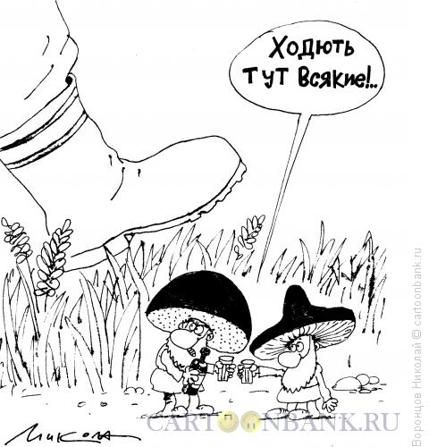Карикатура: Грибы, Воронцов Николай