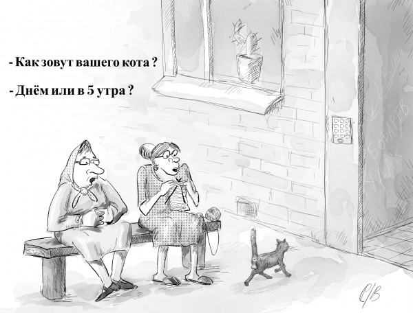 Карикатура: Кот, Владимир Силантьев