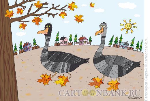 Карикатура: Гусиные лапки, Белозёров Сергей