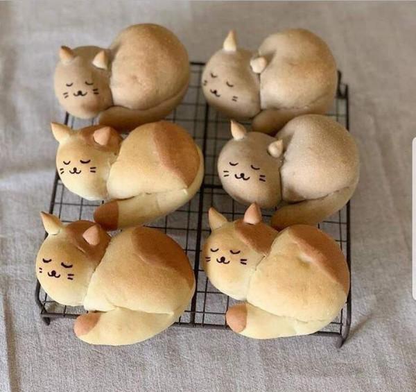Мем: Пироги с котятами, Малый Кыс