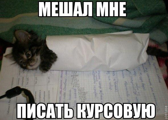 Мем: Курсавая, Кужелева Настя