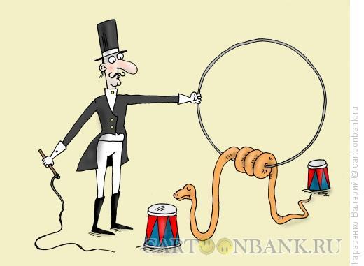Карикатура: Питон, Тарасенко Валерий