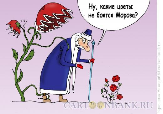 Карикатура: Эхо, Тарасенко Валерий