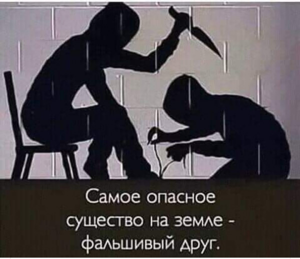 Мем: Правда жизни..., Uzbek