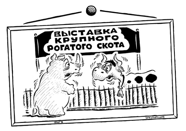 Карикатура: Диалог и моно...рог, Giptopotam