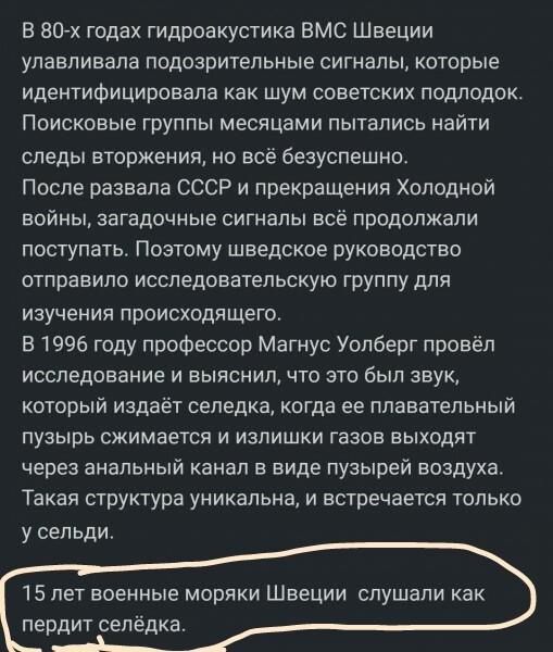 Мем, Сашко Гарматний