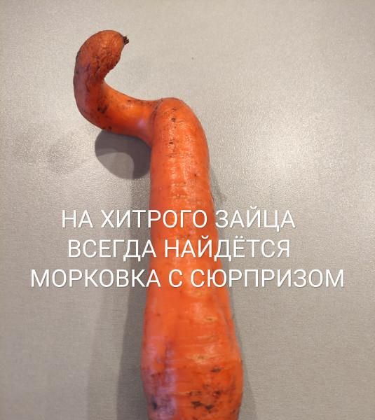 Мем: О жизни, Пантелеич