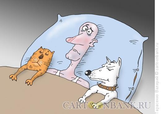 Карикатура: Только спокойствие, Тарасенко Валерий