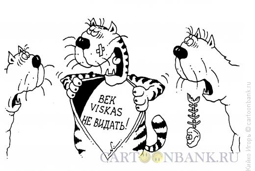 Карикатура: Бывалый кот, Кийко Игорь