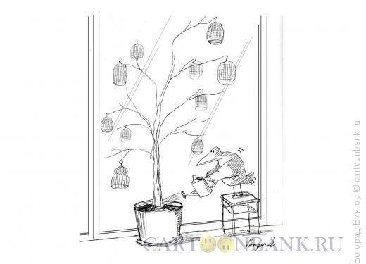 Карикатура: Комнатное растение, Богорад Виктор