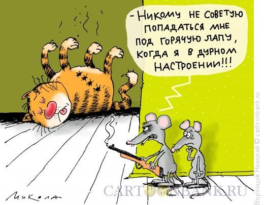 Карикатура: Дурное настроение, Воронцов Николай