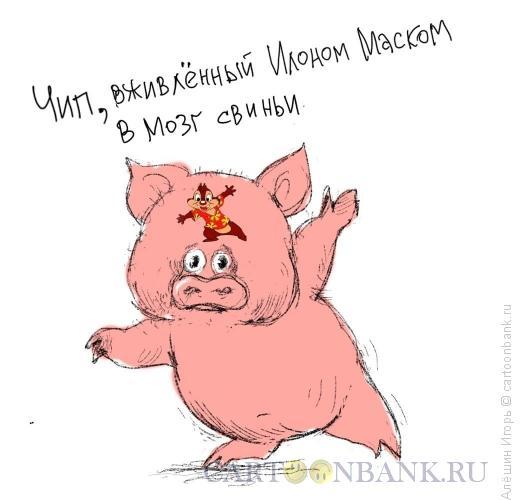 Карикатура: Чип, Алёшин Игорь
