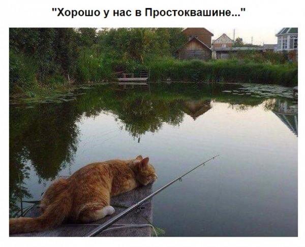 Мем: Рыбалка