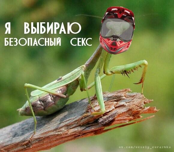 Мем: Я выбираю безопасный секс, Юрий Жиловец