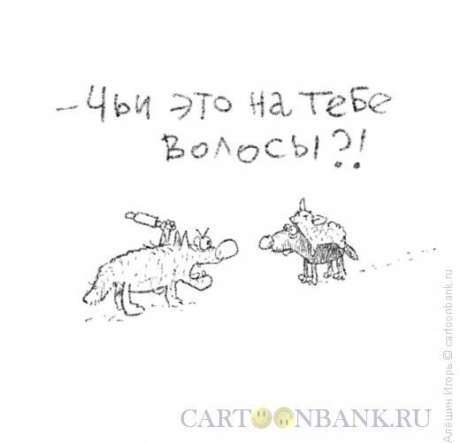 Карикатура: ревность волчицы, Алёшин Игорь