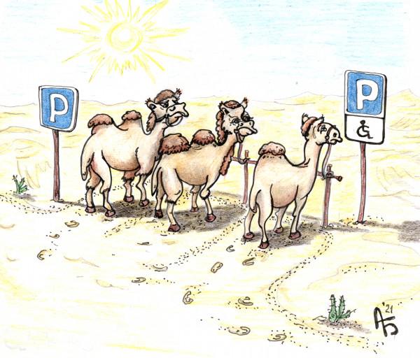 Карикатура: Верблюжья парковка, backdanov
