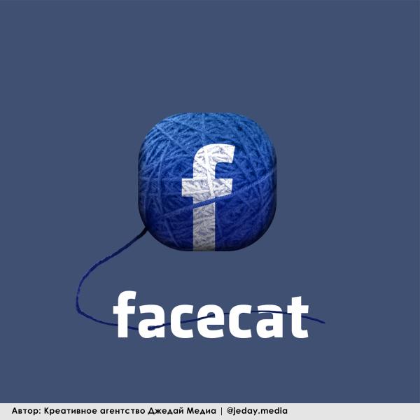Мем: Faebook для кошек, JedyMedia