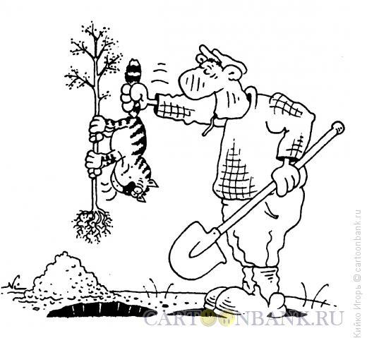 Карикатура: Кот как инструмент, Кийко Игорь
