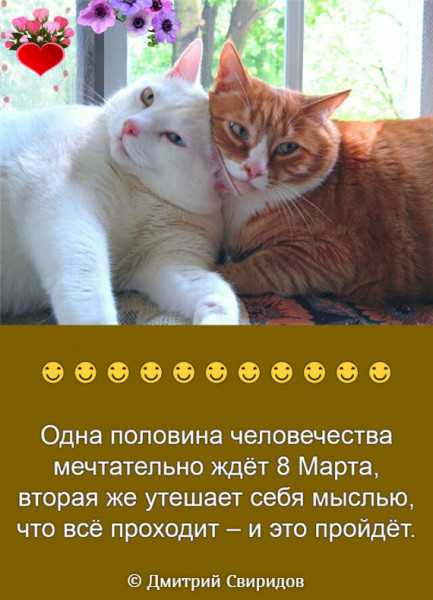 Мем, Дмитрий Свиридов