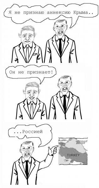 Карикатура: Пресс-конференция Эрдогана и Зеленского, Яна Запутина