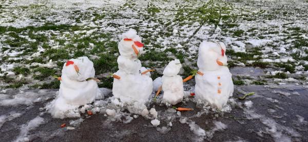 Мем: Снеговики в Ирландии, Repa