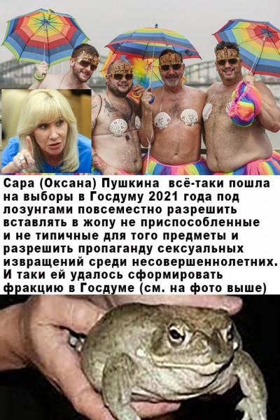 Мем: Пустите Оксанку Пушкину в думу, Михаил Лазаревич Ушац