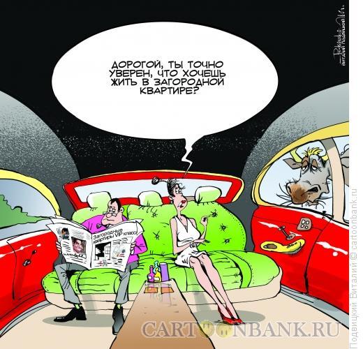 Карикатура: Сомнения, Подвицкий Виталий