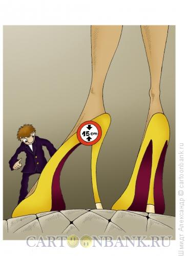 Карикатура: Подкаблучное ограничение роста, Шмидт Александр