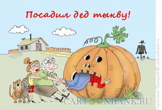 Карикатура: Огород, Тарасенко Валерий