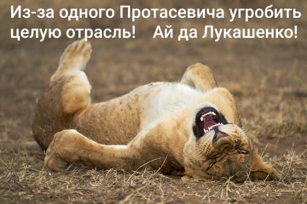 Мем: Беливиа, Анатолий Стражникевич